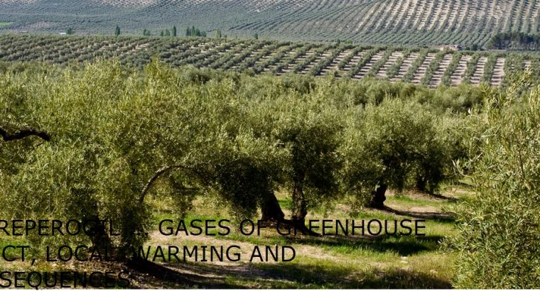 TORREPEROGIL … GASES OF GREENHOUSE EFFECT, LOCAL WARMING AND CONSEQUENCES