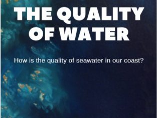The quality of seawater