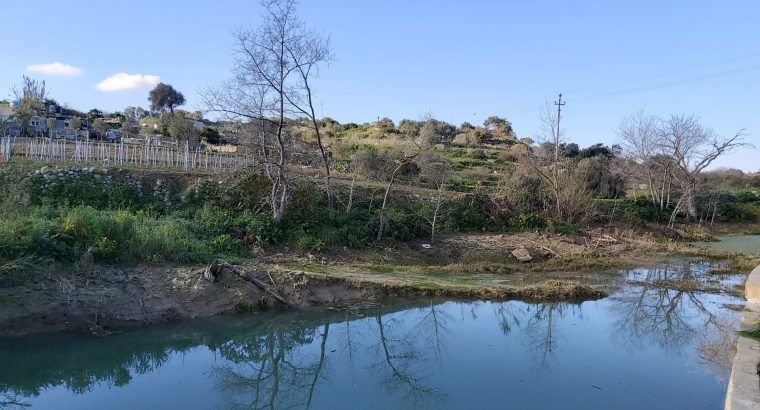 Reduce your carbon footprint and save Malta's watercourses